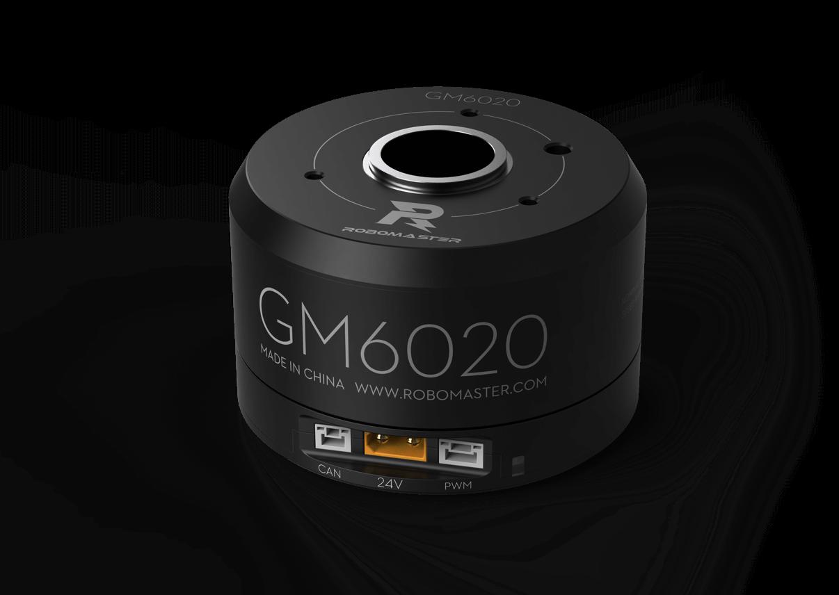 Gm6020